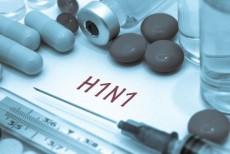 a-gripe-a-tambem-conhecida-como-gripe-h1n1-uma-doenca-viral-5703c6a4d1358